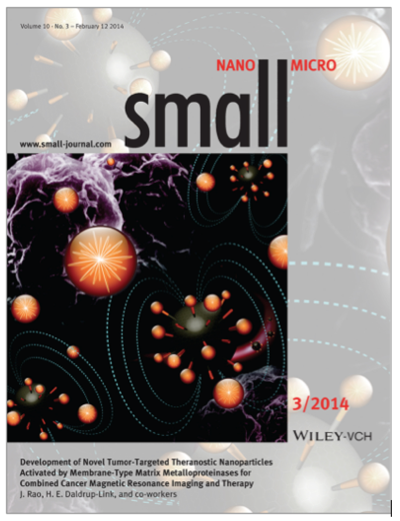 Cover article: Small 10(3): 417